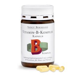 Vitamín B-komplex 100Kps