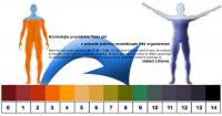 Testovacie pásiky na pH moču 99 pružkov